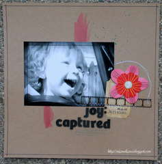 joy: captured