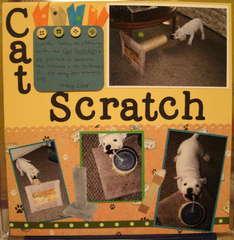 ~*~Cat Scratch~*~
