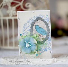 Fly Every Day by Evgenia Petzer featuring Prairie Chic from Bo Bunny