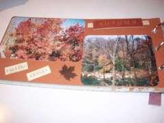 Autumn Bliss #4