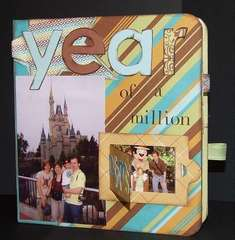 Year of a Million Slide Book Cover
