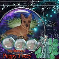 YES, THERE ARE PUPPY FAERYS!  HAPPY ST PATRICK'S DAY