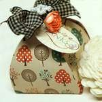 Thanksgiving Gift Boxes *Dream Street*