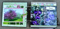 Cranberry Bushes and Irises Pages