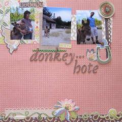 donkey-hote