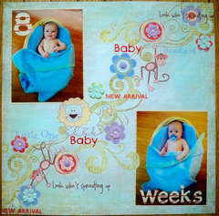 8 Weeks