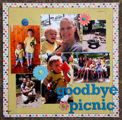 Goodbye Picnic - Ian's album