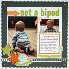 Not a Biped **New Pebbles Inc**