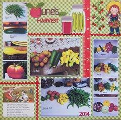 June's Harvest