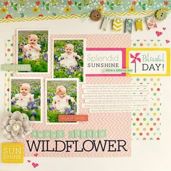 Sweet Little Wildflower *My Creative Scrapbook Kits*