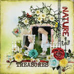 Small Nature Treasures ***Dusty Attic GDT***