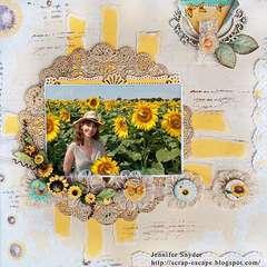 Sunflower Fields - Scraps Of Darkness
