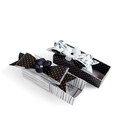 Party Favor Boxes featuring Black Ice from Imaginisce