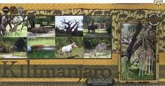 Kilimanjaro Safari Adventure