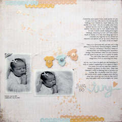just so tiny <br>{Jenni Bowlin August Kit)