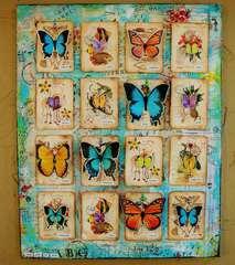 Butterflies - Scraps of Darkness