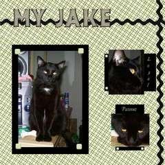 My Jake