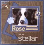 Rose, You are Stellar - No. 1 in The Bedlam Farm series)