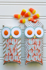 *We R* Owl Pillow Poxes