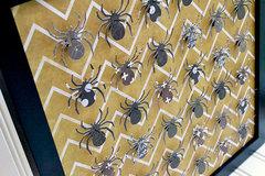 *We R* Spider Specimen Art