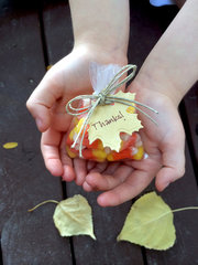 *We R* Easy Fall Favors