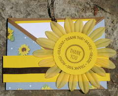 Sunflower Thanks