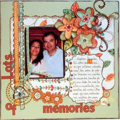 LOTS OF MEMORIES