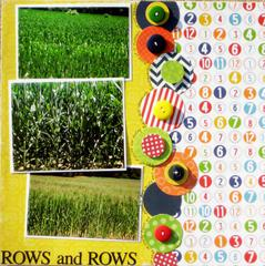 ROWS and ROWS