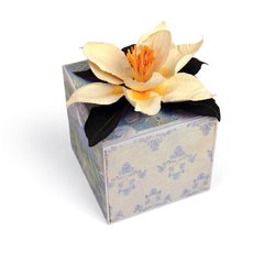 Southern Magnolia Gift Box by Susan Tierney-Cockburn