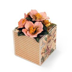 Helleborus Crocus Gift Box by Susan Tierney-Cockburn