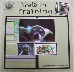 Yoda in Training