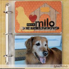 Milo 8x9 *BoBunny Misc Me*