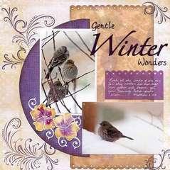 Gentle Winter Wonders
