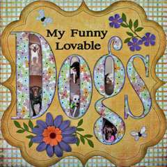 My funny lovable Dogs
