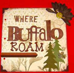 Where Buffalo Roam