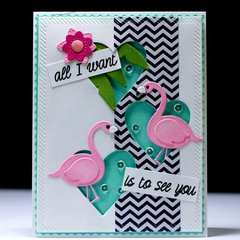 All I want is to see you flamingos