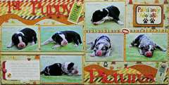 1st Puppy Pictures - pages 1&2