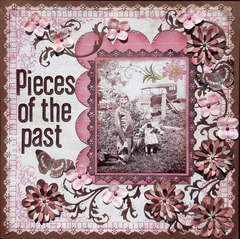 Pieces of the Past