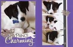 Vol11 Pg11-12 Prince Charming