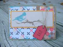 Hi Bird card