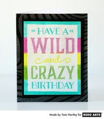 Wild and Crazy Birthday  By Tami Hartley
