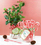 Holly and Candy Canes by Nancy Taylor