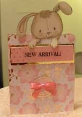 New Arrival - New Baby Girl - Kanban Crafts