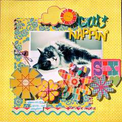 Cat Nappin'