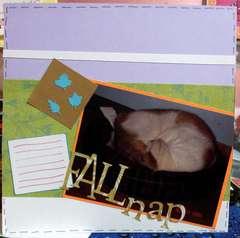 Fall nap