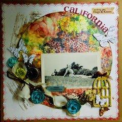 California 45'