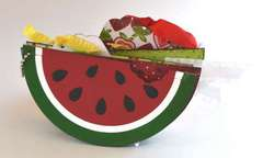 Summertime Watermelon Mini Album