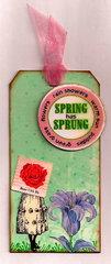 Spring tag