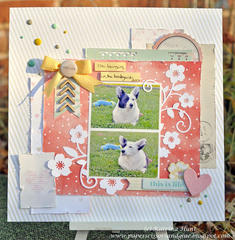 This is Life-Gossamer Blue Nov. Kits