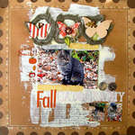 fall catography